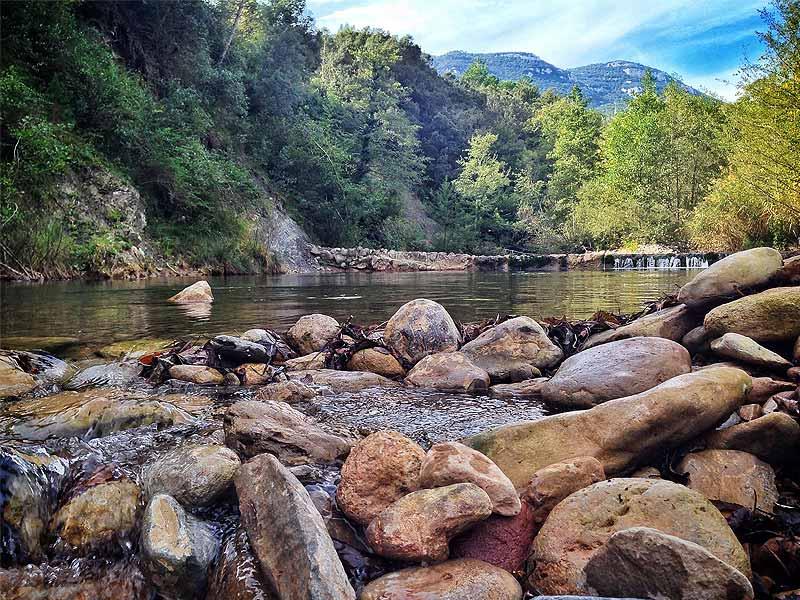 Càmping Bassegoda Park – Albanyà